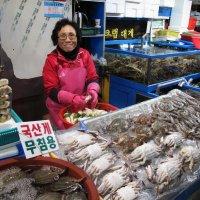 Рыбный рынок в Сеуле. :: Ева Такус