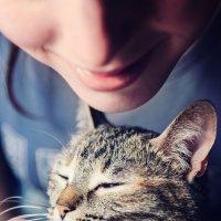 Cat :: Роман Семёнов