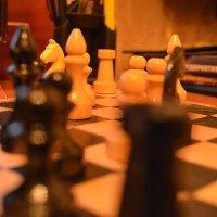 шахматы :: Дима Красовский