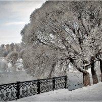 Зимний парк :: Владимир Белозеров