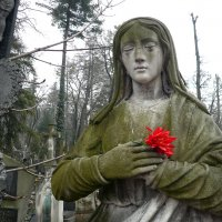 в атмосфере Лычаковского кладбища. Львов. :: Дмитрий Цымбалист