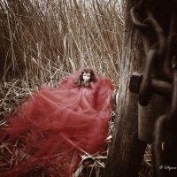 Мир кукл :: Татьяна Жуковская