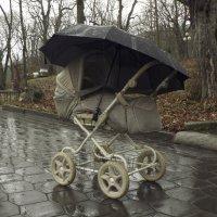 дождь :: Мария Климова