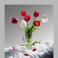 Натюрморт с тюльпанами :: Валентина Белоусова