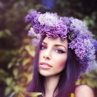lilac :: Katerina Gorays