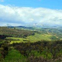 Сицилийские ландшафты :: Ronda Swap