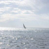 yacht and sea :: Антон Жолудев
