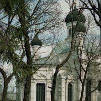 Крым Симферополь. :: Ольга Волкова