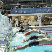 Чемпионат России по плаванию :: Павел Железняк