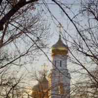 утро :: Андрей ЕВСЕЕВ