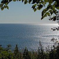 Сахалин Охотское море :: Александр Ваюш