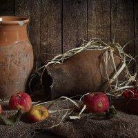 С прошлогодними яблоками... :: Ирина Елагина
