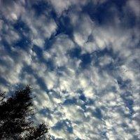 Облака :: Мурод. Т