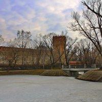 моя столица- новодевичий монастырь :: юрий макаров