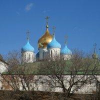 Новоспасский монастырь. Москва. :: Юрий Шувалов
