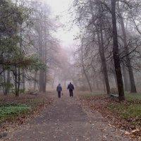 парк :: Валентина Береснева