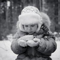 Зимний пикник :: Елена Андреева