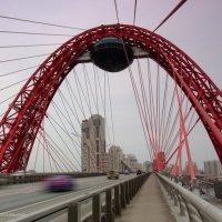 Живописный мост. Ракурс... :: Ирина Терентьева