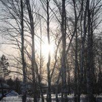 На краю деревни :: Софья Мязина