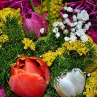 8 марта :: Светлана