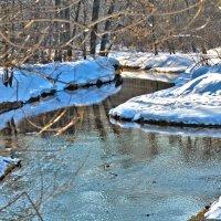 Краски уходящей зимы :: Екатерина Рябинина