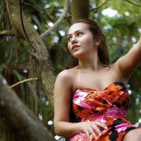 Эсперимент в тропическом лесу :: Daria Storozhkova