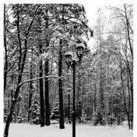 Одинокий фонарь :: Дмитрий Рожков