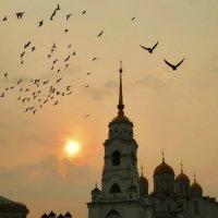 Утро одного дня! :: Владимир Шошин