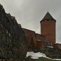 Турайда. Замок :: Дмитрий Близнюченко