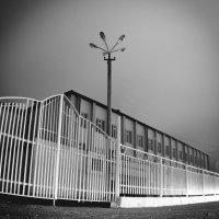 Белая ночь :: Сахаб Шамилов