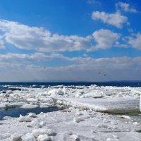 лёд тронулся :: Ingwar