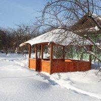 Беседка в зимнем саду. :: Виктор Сухарев