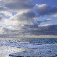 На берегу Белого моря :: Иван Клещин