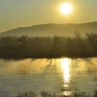 В утреннем солнечном свете :: galina tihonova