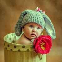 Варвара-краса :: Ирина