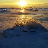 Лёд и пламя :: Людмила Алексеева