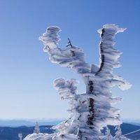Суровые ветра гор :: Алексей Балацкий