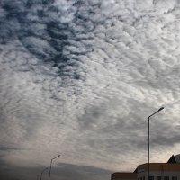 железное небо :: Раджив Пирмедов