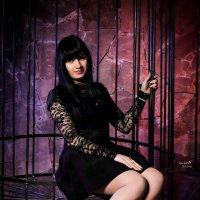 королева в клетке :: Кристина Kottia