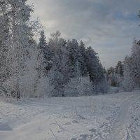 Зимний пейзаж :: vladimir Bormotov