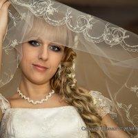 Очи, фата, невеста... :: Михаил Скачков