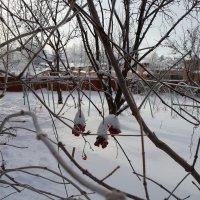 Март, но не весенний! :: Михаил Столяров