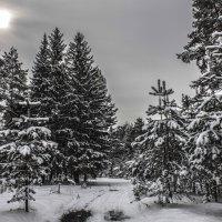 Зимняя сказка HDR :: Дмитрий Беляков