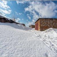 Зима не хочет уходить.... :: Сергей Бережко