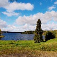 Рощинское озеро :: Сергей Кочнев