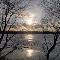 Вечер  у озера :: Юрий Цыплятников