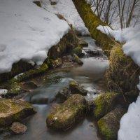 Весна,первые скудные ручейки :: Александр Иванов