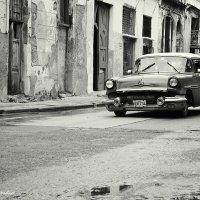Black and white :: Arman S