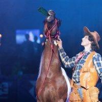 У пьющего хозяина и лошадь пьет :: Вячеслав