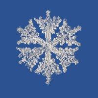 Снежинка в стиле барокко :: Тимофей Черепанов